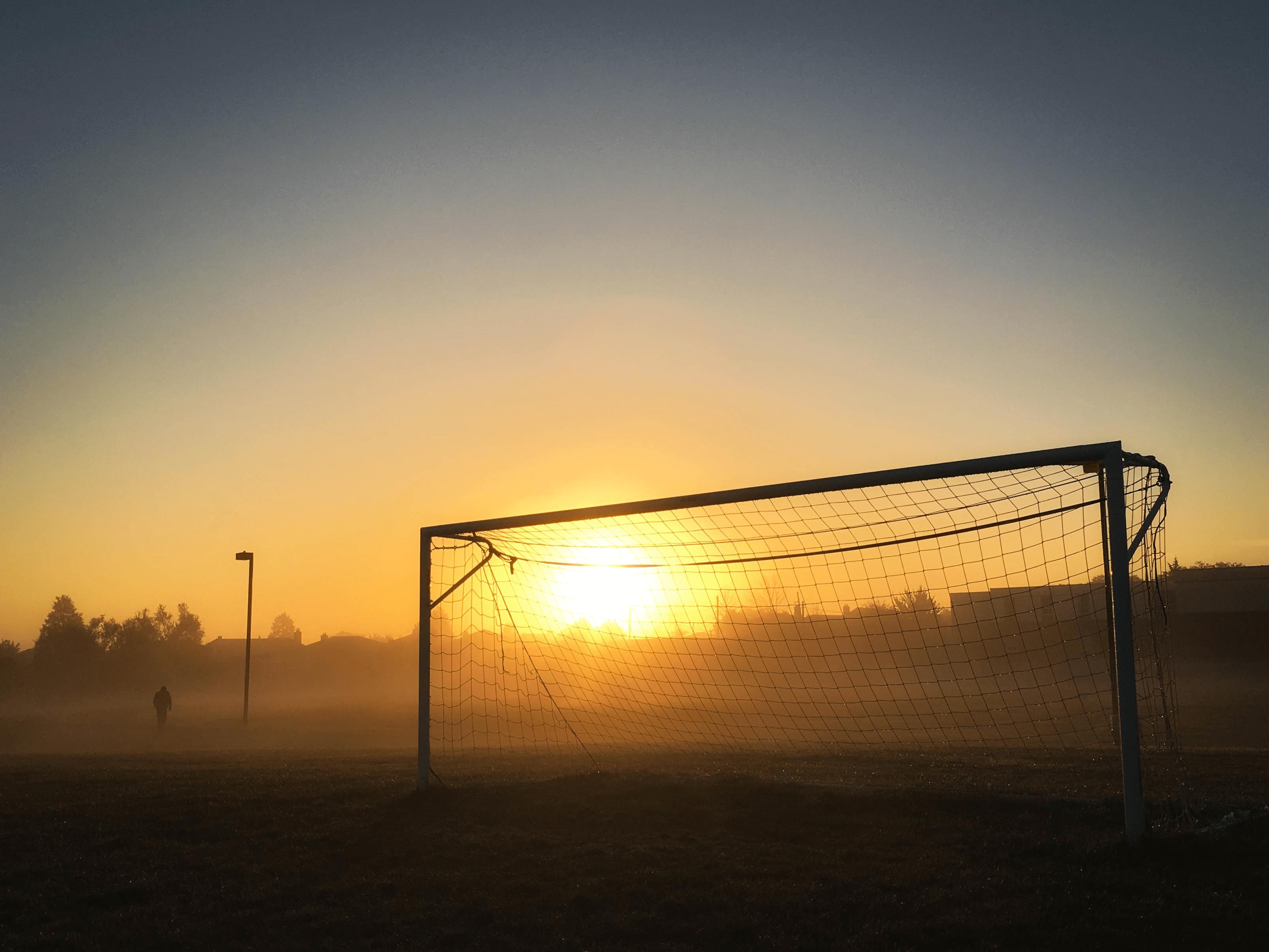 Goals (Blog Post 8).png